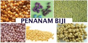 Alat-Penamam-Biji-Tanaman-jagung-Kedelai-Kacang-dll-4-tokomesinsemarang (3)